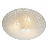 Colby 3 light Ceiling Light