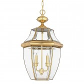 Quoizel QZ/NEWBURY8/L Newbury Large Chain Lantern