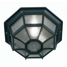 Aden Exterior Lighting -Black
