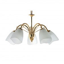 Turin Decorative Ceiling Light - 5 Light, Brass